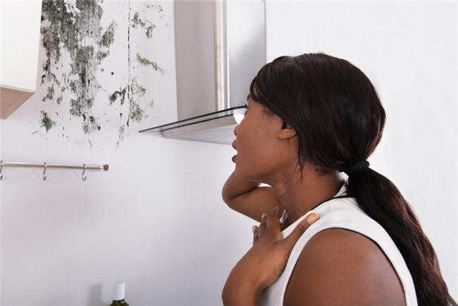 7 Mold Preventative Maintenance Steps For Kitchens And Bathrooms in your rental property
