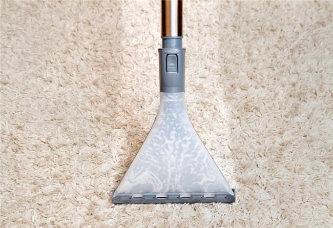 4 Steps to Make Carpet Last Longer in Rental Homes