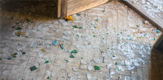 Do We Have Any Recourse With Property Management Company Over Tenant Damages?
