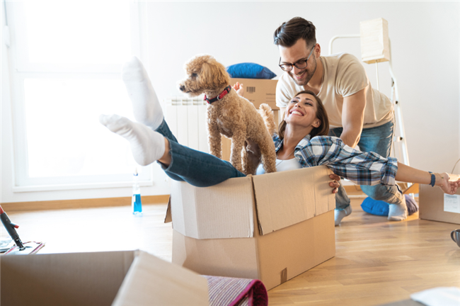 4 Ways to Balance the Needs of Pets and Residents in Multifamily Communities