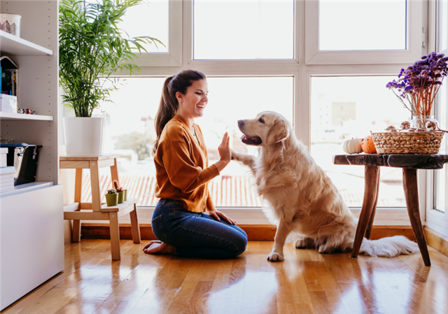 Property Managers, Take Note: Happy Pet Owners Mean Happy Long-Term Residents