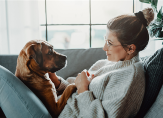 Ask Brad: Tenants Want to Know Why There's a Dog in No-Pet Building?