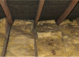 4 Steps To Prevent Mold In Your Rental Property Attic